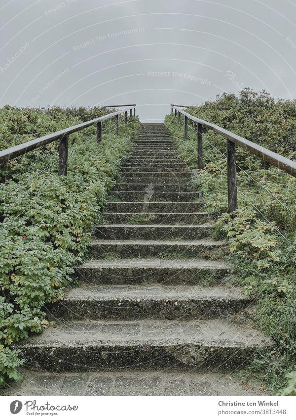 400 / es geht aufwärts ...  Ältere abgenutzte Steintreppe mit beidseitigem Geländer und niedrigen Pflanzen zu beiden Seiten führt recht steil nach oben. Blick von unten gegen hellen Himmel