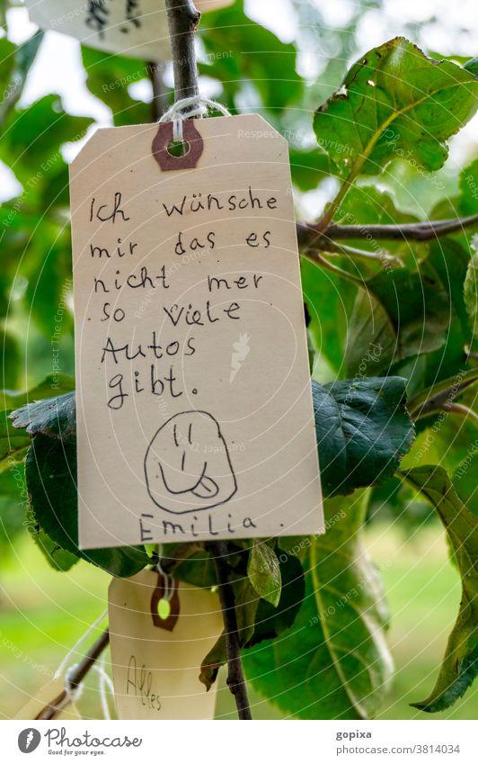 Etikett mit Wunsch hängt in einem Baum Auto Verkehr Gesellschaft Zeitgeist Politik Hoffnung Verantwortung Umwelt Umweltschutz Umweltverantwortung Natur