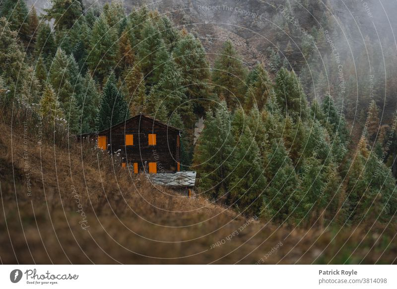 Schweizer Chalet in den Bergen mit orangefarbenen Fensterläden mit Pinienbäumen im Hintergrund Kiefern Kabine Wallis Zermatt Suisse Romande Genf Zürich Herbst