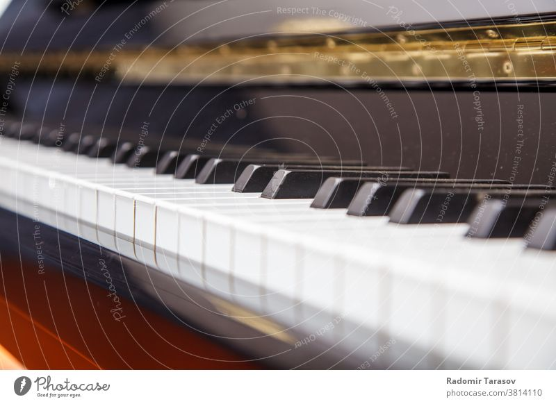 Klaviertastatur Nahaufnahme schwarz Keyboard Klassik Instrument Musik Taste Musical weiß Pianotastatur Kunst Linien Melodie Klaviertasten abstrakt Hintergrund