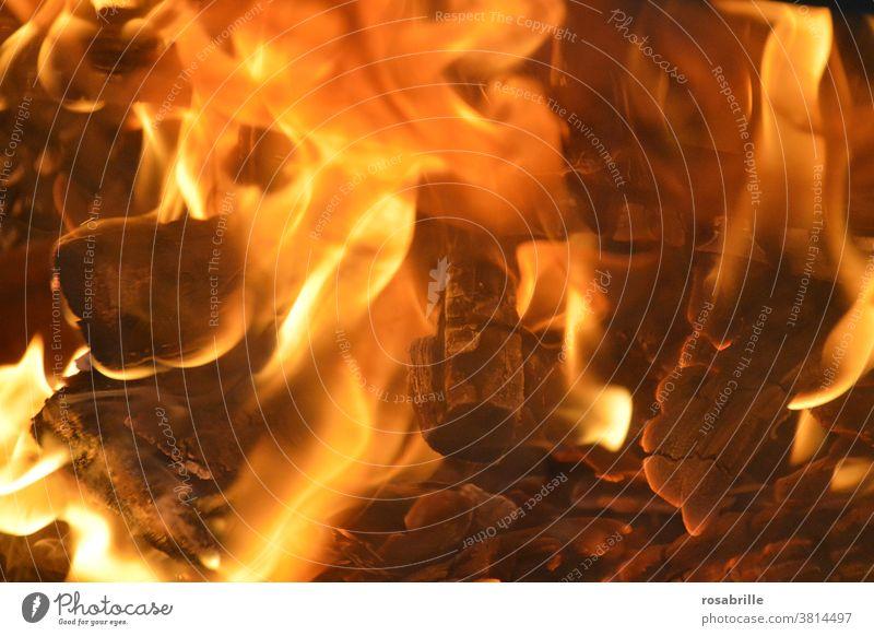 Feuer | Trash 2020 Glut Asche Lagerfeuer heiß brennen nah gefährlich Gefahr verbrennen Flamme Flammen Holz Kohle verkohlen verkohlt Wärme warm Hitze erwärmen