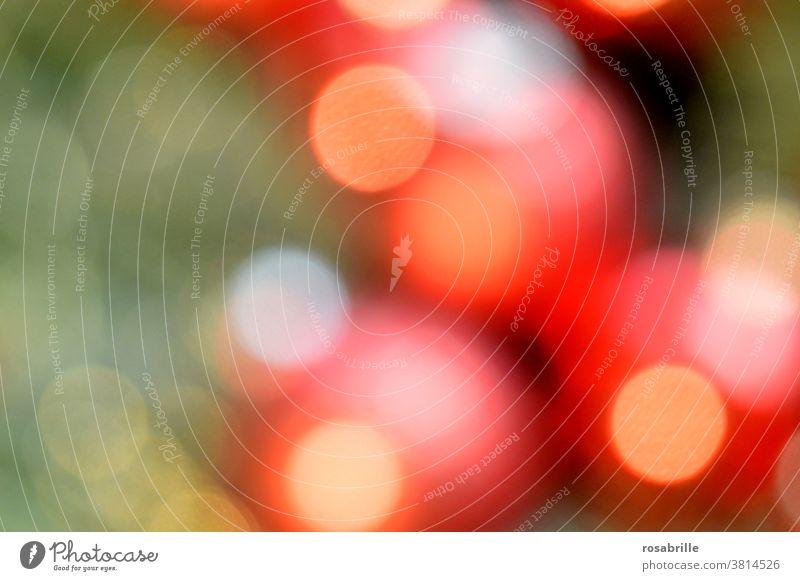 Farbkombination | weihnachtliches Bokeh in rot, grün und gelb - rote Kugeln am Tannenbaum mit Lichterkette Weihnachten abstrakt Kreise unscharf Weihnachtsbaum