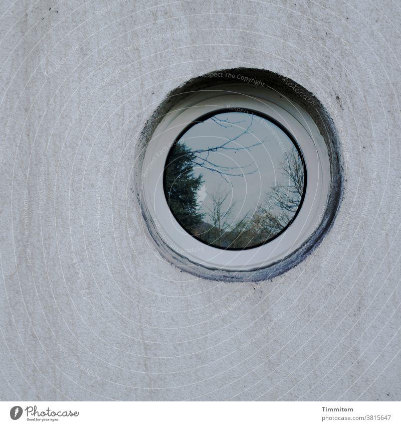 Der Blick in die Zukunft Fassade Wand Fenster rund Auge Glas Spiegelung Bild Putz Äste Stadt Reflexion & Spiegelung Außenaufnahme Reflexion u. Spiegelung
