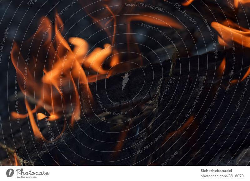 Flammen Feuer Brand heiß Wärme Feuerstelle brennen Menschenleer Glut Außenaufnahme glühen schwarz Kohle Brennholz glühend rot