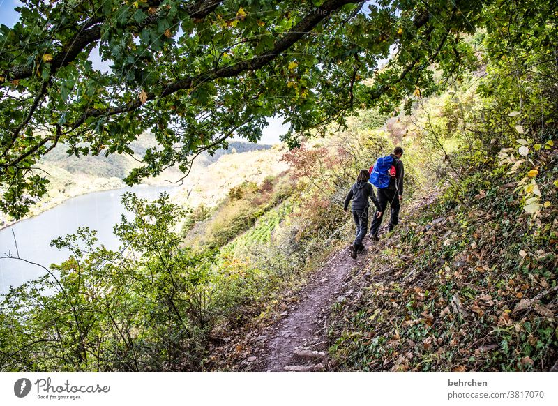 knapp daneben   gehts runter in die mosel Moselsteig Hunsrück Moseltal Weinbau Rheinland-Pfalz Fluss Idylle Ruhe Sonnenlicht Mosel (Weinbaugebiet) Flussufer