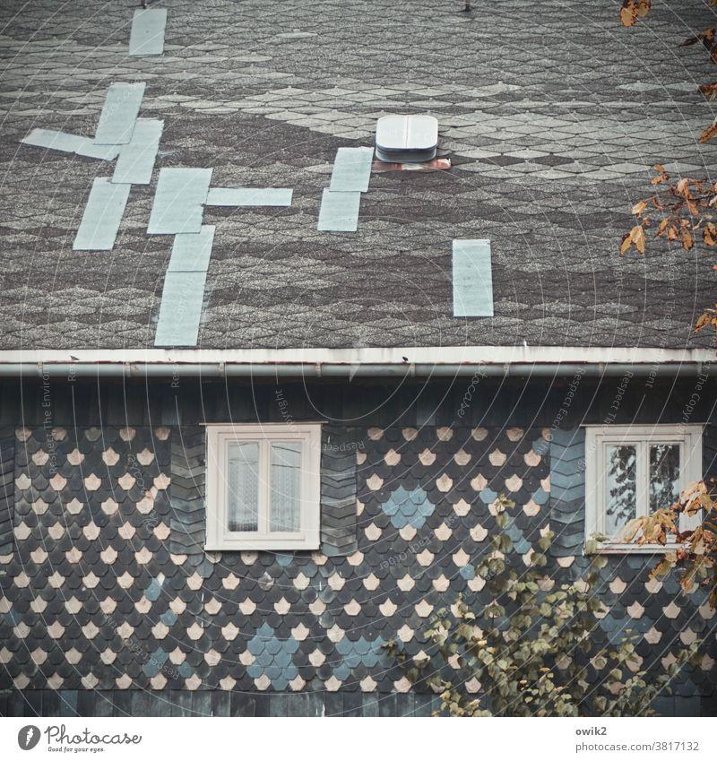 Improvisation Lausitz Oberland Sachsen Ostdeutschland Haus alt volkstümlich Muster Strukturen & Formen Dach Fassade Fenster Dachfenster reapariert saniert