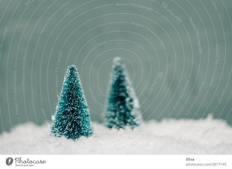 Winterliche Miniaturen zweier Tannenbäume im Schnee Weihnachten weiß kalt Wald weisse weihnachten Jahreszeiten Natur künstlich unecht verschneit schneebedeckt