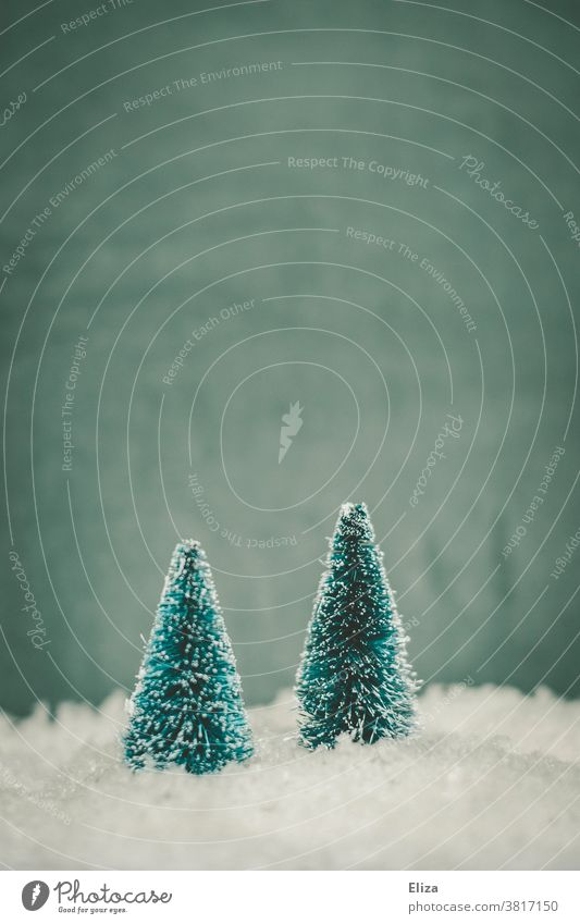 Zwei Tannenbäume im Schnee. Winter und Weihnachten. Tannenbaum Winterlandschaft Baum kalt Jahreszeiten blau Schneelandschaft Bäume