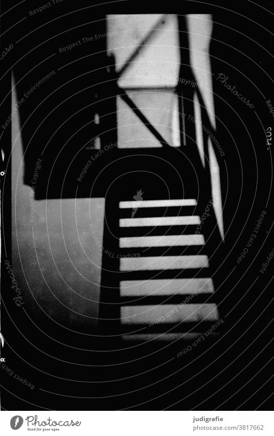 Analoges Foto einer Treppe stufen Schwarzweißfoto analog unheimlich dunkel ungewiss Architektur abwärts aufwärts Geländer Treppengeländer Gebäude