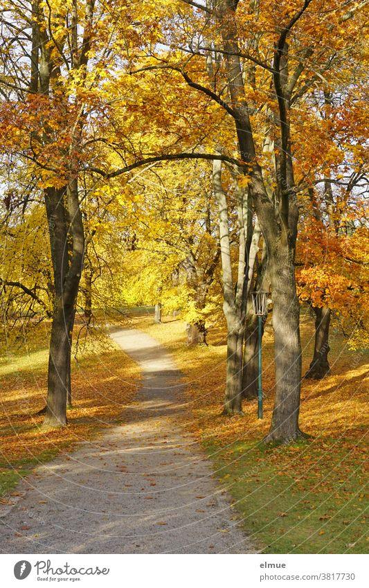 Weg durch einen Park mit herbstlich bunt gefärbten Laubbäumen und Blättern auf der Wiese sowie einer Straßenlaterne - goldener Oktober Herbst Herbstfärbung Baum
