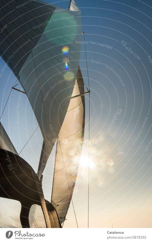 Das Segel der Yacht bläht sich auf im Wind und verdeckt teilweise die Sonne Mast Segelboot segeln Wassersport Himmel Sonnenstrahlen Blau Weiß Tag Ferien