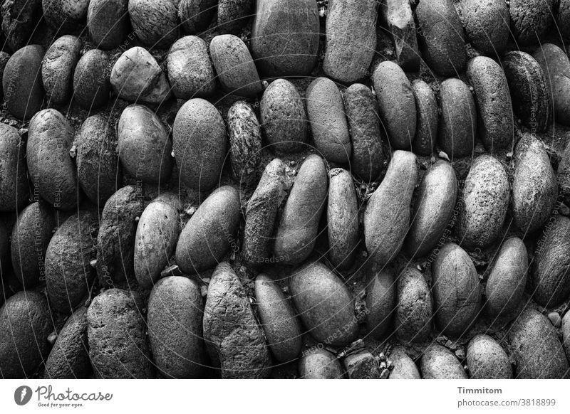 Kieselsteinteppich Kieselsteine Ordnung akkurat Anordnung eng Schwarzweißfoto Strukturen & Formen Menschenleer