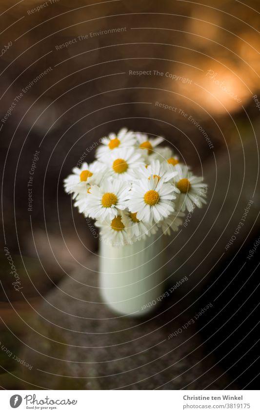 Ein kleiner Strauß Gänseblümchen in einer weißen Vase steht auf dem Rand eines alten Steintrogs. Hintergrund mit schwacher Tiefenschärfe und Bokeh. Blumenstrauß