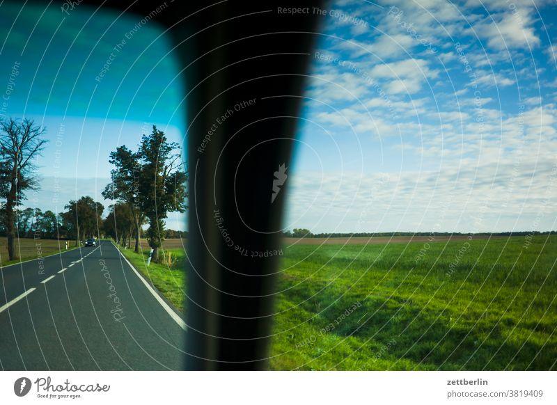 Fahrt nach Linum, Brandenburg brandenburg herbst himmel linum natur naturschutz umweltschutz winterquartier wolke wiese weide landwirtschaft auenland wald baum