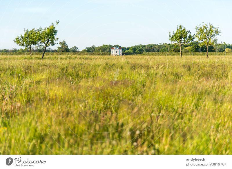 Einzelne weiße Villa am Rande eines Deiches Architektur Hintergrund schön Grenzen Gebäude wolkenlos farbenfroh Landschaft Landkreis Damm Ausflugsziel
