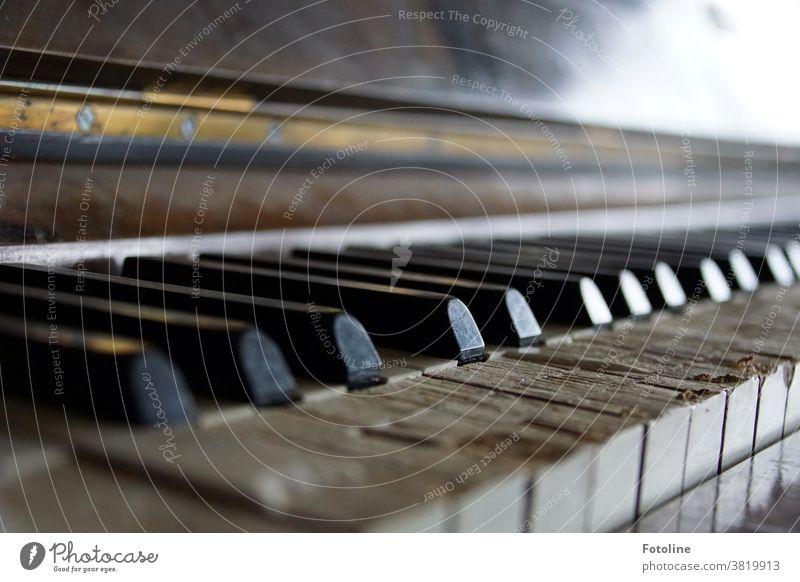 Na dann hau mal in die Tasten! - oder ein uraltes Klavier, das seine besten Tage lange hinter sich gelassen hat aber trotzdem noch Töne von sich gibt. Wenn auch schiefe.