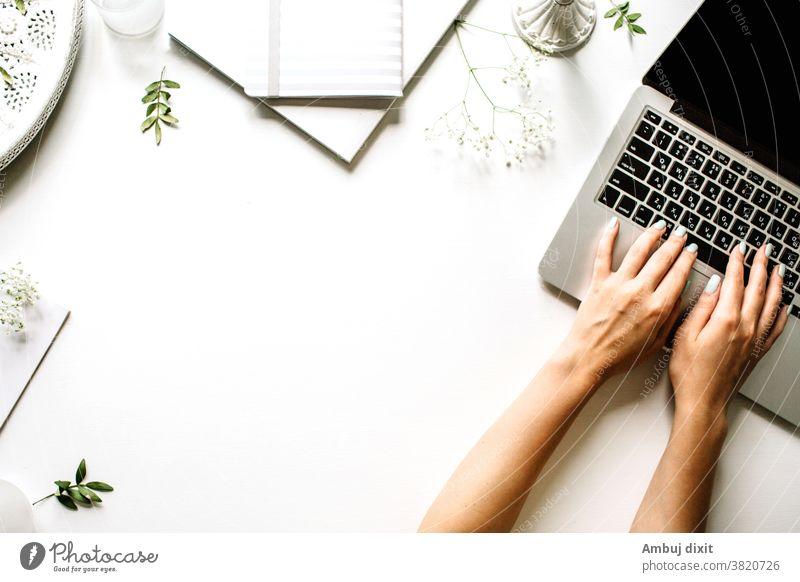 Speichern Download Vorschau Vorschau Flachlayout eines Arbeitstisches mit Notizbuch und Kaktus auf grünem und gelbem Hintergrund flach legen Schreibtisch Farbe