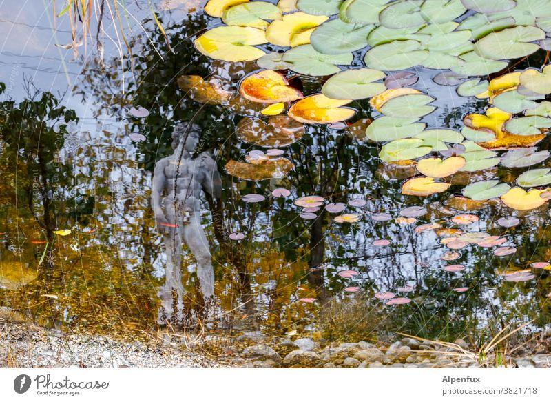 Selfie mit Seerosen Teich Seerosenteich Außenaufnahme Wasser Pflanze Seerosenblatt Farbfoto Statue Statuen Menschenleer Reflexion & Spiegelung Herbst Teichufer