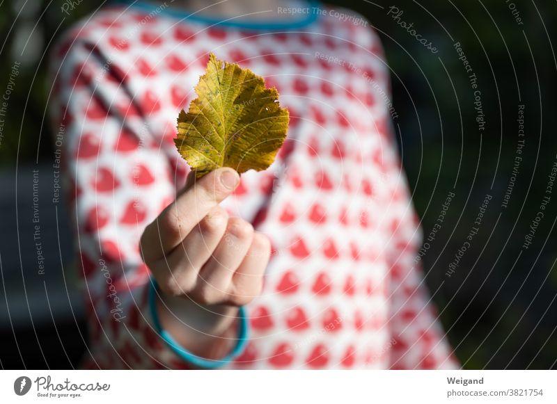 Herbstlaub in Hand von Kind Kindheit Hoffnung bunt gelb rot blau Laub Blatt optimistisch Trauer traurig Mädchen Mensch Kindergarten Wald Zufriedenheit