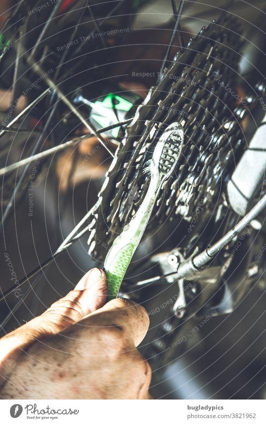 Man sieht eine Männerhand die mit einer grün weißen Zahnbürste die Ritzel /Zahnräder eines Fahrrads sauber bürstet Fahrradfahren Fahrradkette Kette Kettenfett