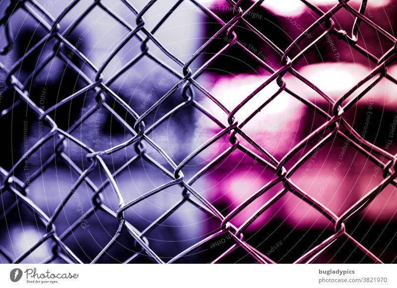 Doppelter Maschendraht vor unscharfen Hintergrund in pink und lila/ Violet Maschendrahtzaun Zaun Drahtzaun Sicherheit Schutz Barriere Grenze Verbote gefangen