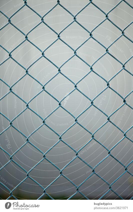 Blauer Maschendrahtzaun vor unscharfem grauen Hintergrund Zaun Metall Metallzaun Trennung Grenze Abgrenzung blau Grundstücksgrenze Sicherheit Drahtzaun Schutz