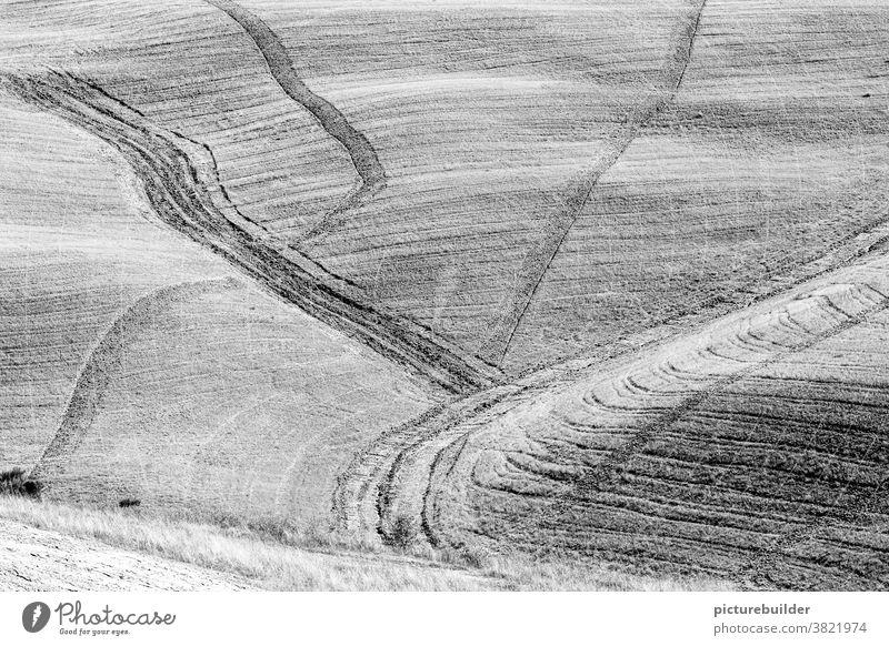 Wege im Feld in Schwarzweiß Hügel Acker Toskana Landschaft Menschenleer Schönes Wetter Außenaufnahme Wege & Pfade Agrarwirtschaft Tag Schwarzweißfoto Licht