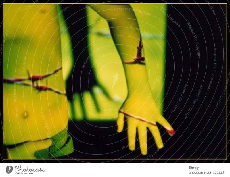schatten Hand grün Finger Daumen Zeigefinger Bauchnabel Kind Licht gelb schwarz abstrakt Mädchen Stacheldraht Mensch Schatten bauchknopf Brust nakt Rahmen Junge