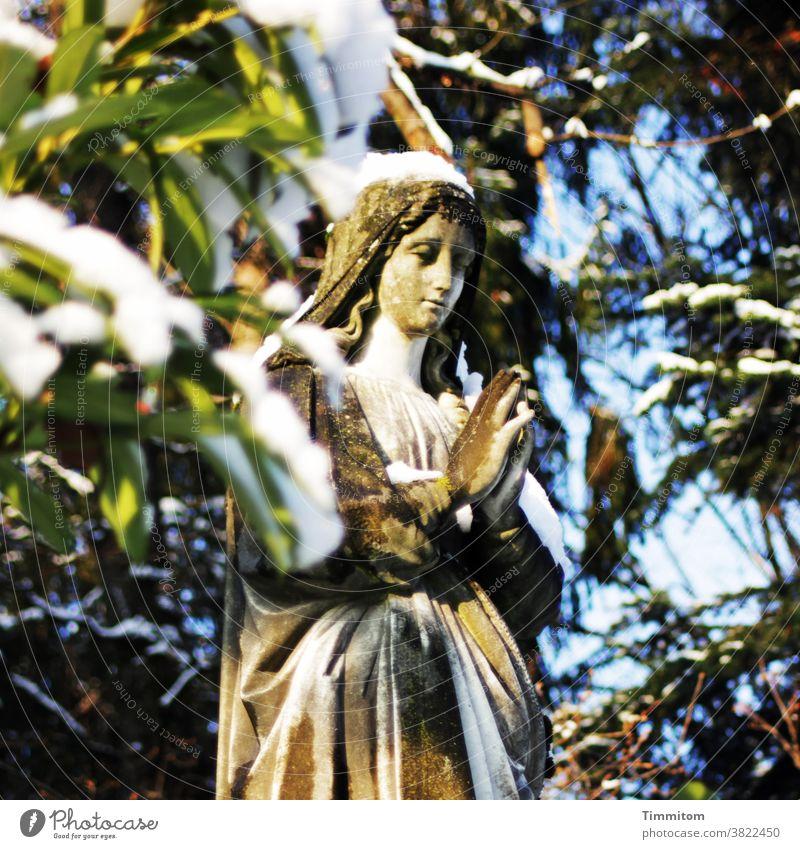 Tod, Leid, Erlösung, Trauer, Ruhe, Frieden Friedhof Grab Engel Statue Blätter Natur Schnee Hoffnung Zuversicht Glaube & Religion