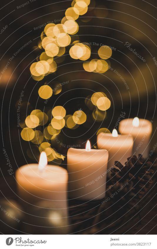 Adventsgesteck mit vier Kerzen. Im Hintergrund die verschwommenen Lichter des Weihnachtsbaumes. Adventskranz Weihnachten 4 brennen Tannenzapfen Weihnachtskugeln