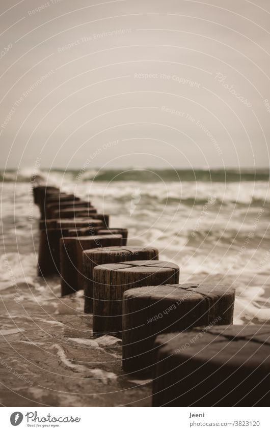 Wellen schlagen gegen die Buhnen aus Holz in der Ostsee Strand Meer Küste Wasser Sturm Himmel grau schlechtes Wetter Mecklenburg-Vorpommern Landschaft Horizont