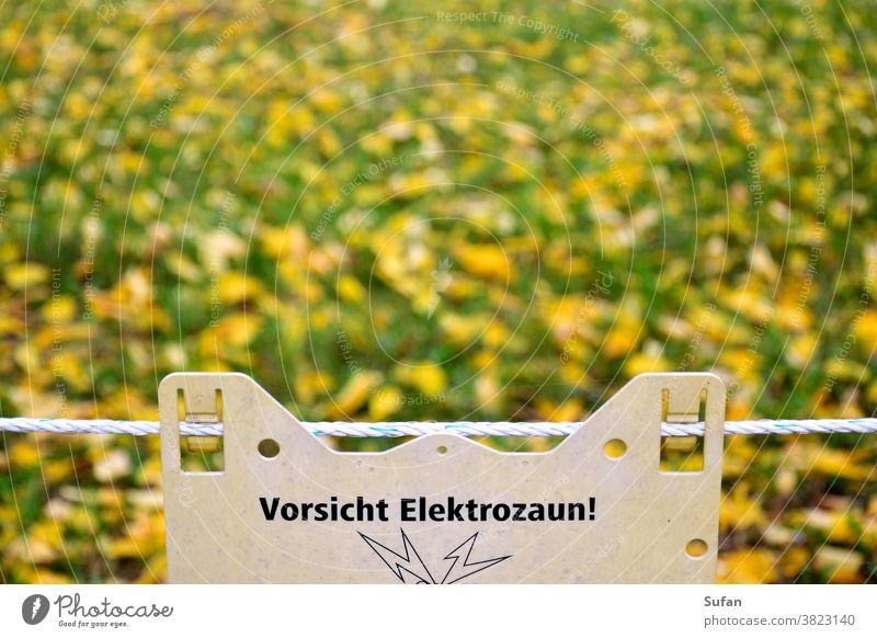 Elektrozaun Schweinepest Wiesen-Hintergrund herbstlich Herbst gelb grün Weide Absperrung Achtung Gefahr Schutzzaun