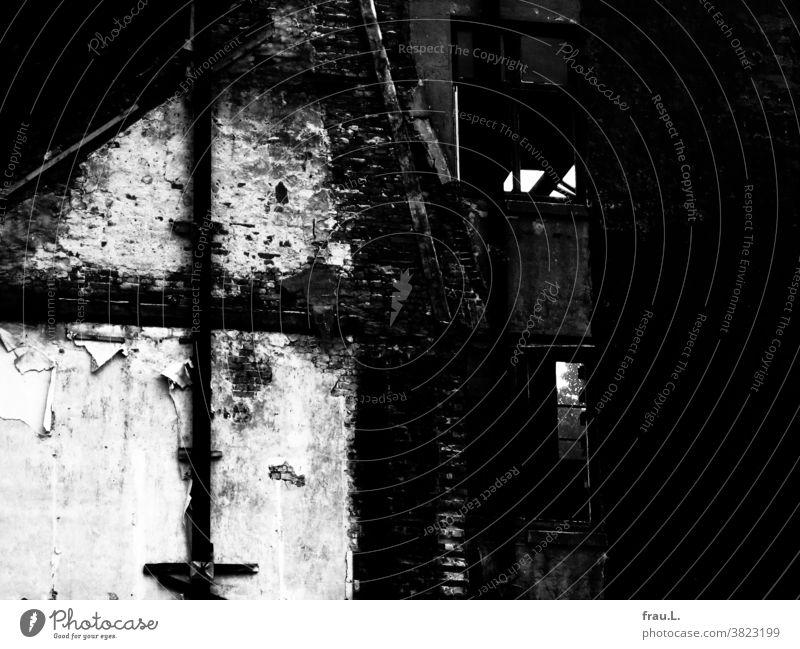 Eine Bauernhausruine Fachwerk Haus alt Abrissgebäude Fenster Mauer Ruine Vergänglichkeit kaputt Fassade Degersen