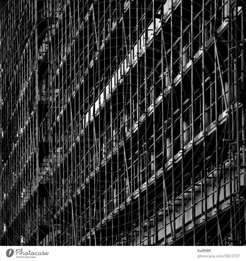Gerüste im Winter - kalt draußen Einrichtung Raureif Frost Baugerüst Baustelle Gebäude Fassade Außenaufnahme Sanieren Arbeit & Erwerbstätigkeit Abdeckung