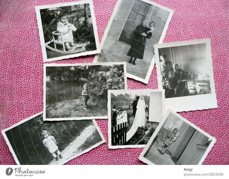 Erinnerungen - alte schwarz-weiß-Fotos aus der Kindheit liegen auf rot-weiß-gepunktetem Hintergrund Mensch Kleinkind Schulkind Mutter Frau Oma Opa Hochzeit