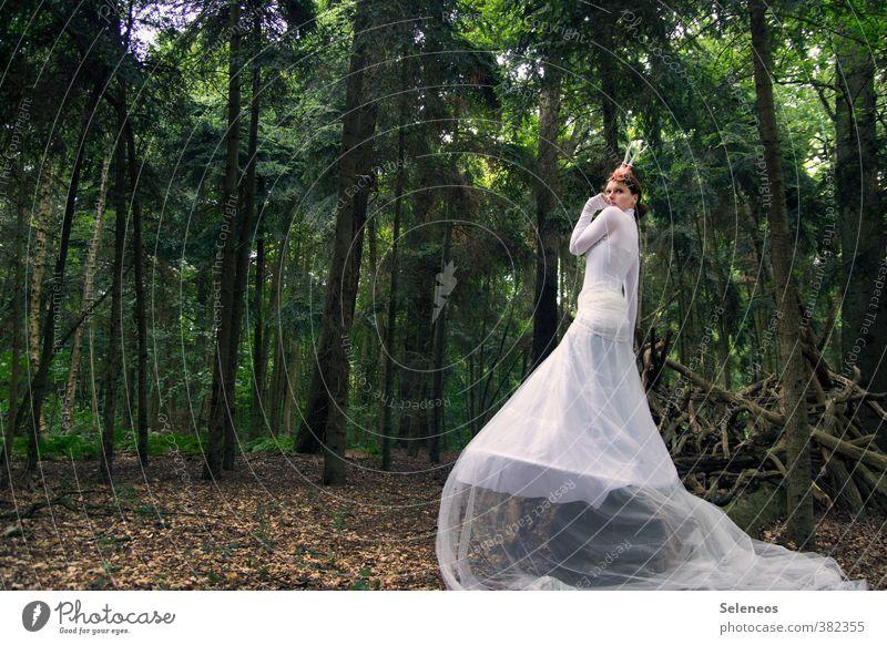 Fabel-haft Mensch feminin Frau Erwachsene 1 Umwelt Natur Landschaft Pflanze Baum Nadelbaum Wald Bekleidung Rock Pullover Accessoire weiß Einsamkeit Leichtigkeit