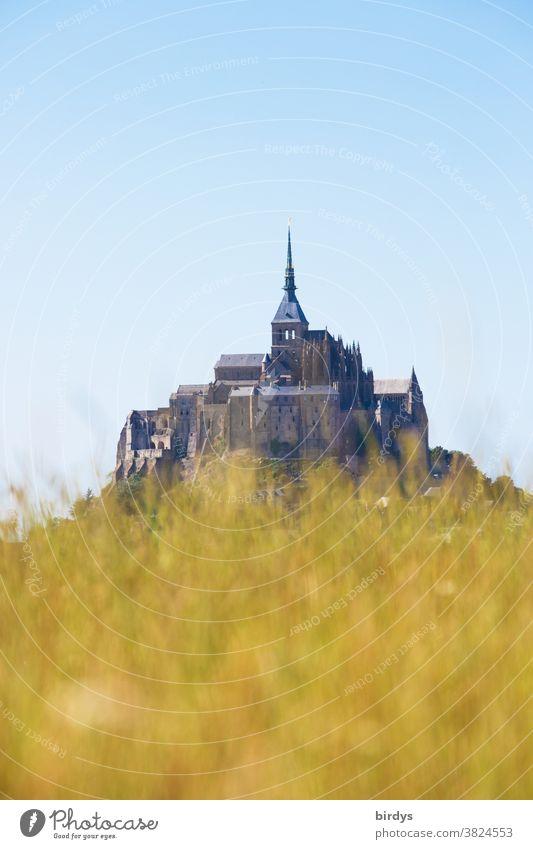 Mont Saint Michel, Inselkloster in Frankreich , unscharfer Grashügel im Vordergrund mont saint michel Insel Mont-Saint-Michel Ferien & Urlaub & Reisen