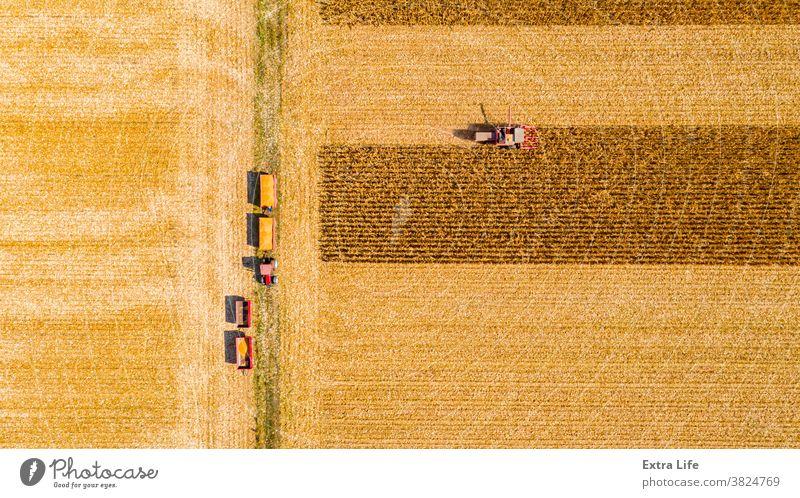 Ansicht von oben auf Mähdrescher, Erntemaschine, erntereifen Mais Antenne landwirtschaftlich Ackerbau Agronomie Müsli Kornfeld Land kultiviert Bodenbearbeitung