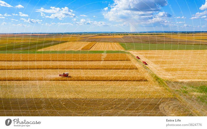 Luftaufnahme von Mähdrescher, Erntemaschine ernten reifen Mais oben Antenne landwirtschaftlich Ackerbau Müsli Wolkenlandschaft Kornfeld Land kultiviert