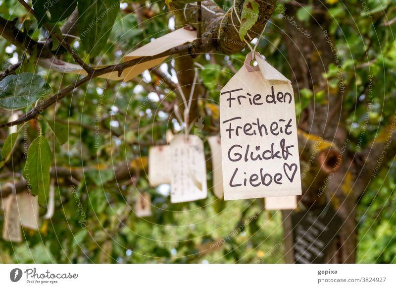 Etikett mit dem Wunsch nach Frieden, Freiheit, Glück und Liebe hängt in einem Baum Hoffnung Gefühle Emotion Erwartung Freude Sehnsucht Stimmung Klischee