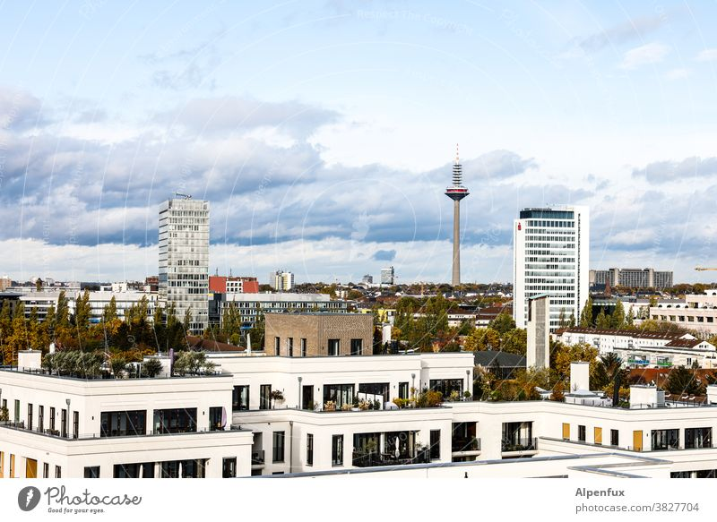 Neue Heimat Frankfurt am Main Architektur Hochhaus Stadt Bankgebäude Außenaufnahme Skyline Farbfoto Haus Großstadt Stadtzentrum Hessen Gebäude Menschenleer