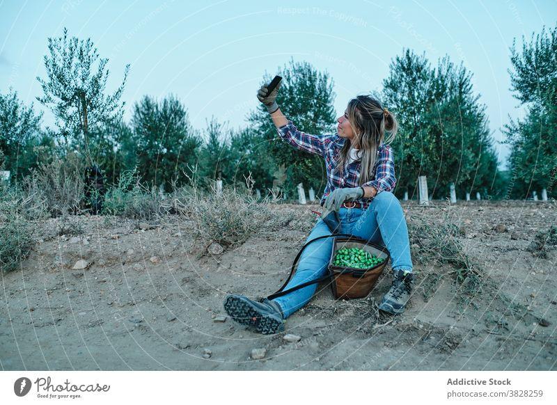 Glücklicher Bauer mit Olivenernte nimmt Selfie Landwirt oliv Ernte Schonung Frau Smartphone Ackerbau ländlich Bauernhof Telefon Mobile teilen fotografieren