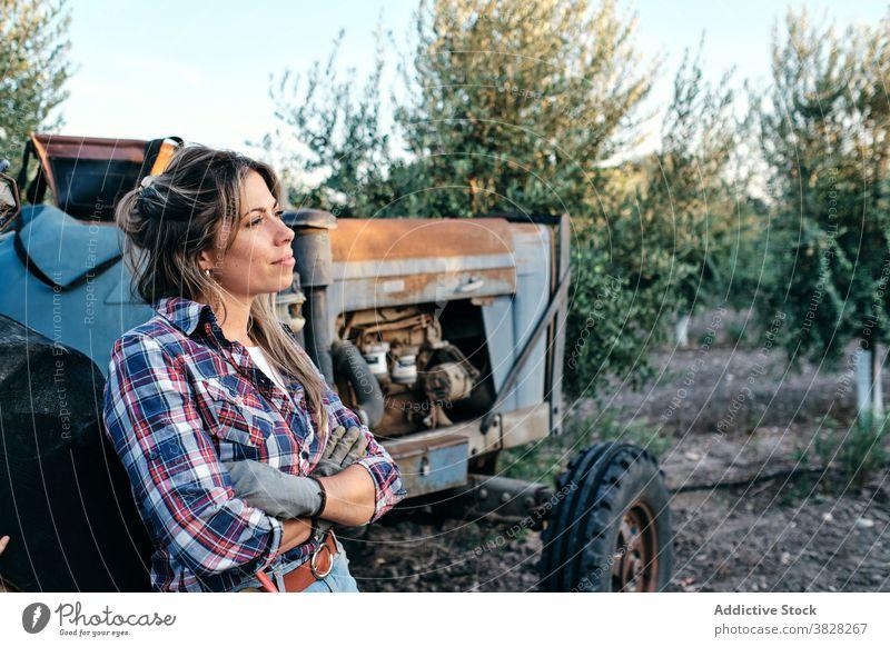 Bäuerin mit Traktor auf Olivenplantage Landwirt oliv Schonung Ernte Maschine Frau Ackerbau ländlich Pflanze Bauernhof zufrieden Erwachsener Kleinunternehmen