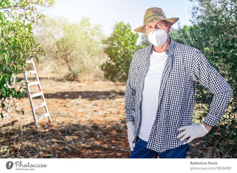 Männlicher Landwirt mit Schutzmaske auf dem Bauernhof Mann Gärtner Mundschutz Gartenbau Frucht Ackerbau kultivieren vegetieren Pflanze wachsen COVID männlich