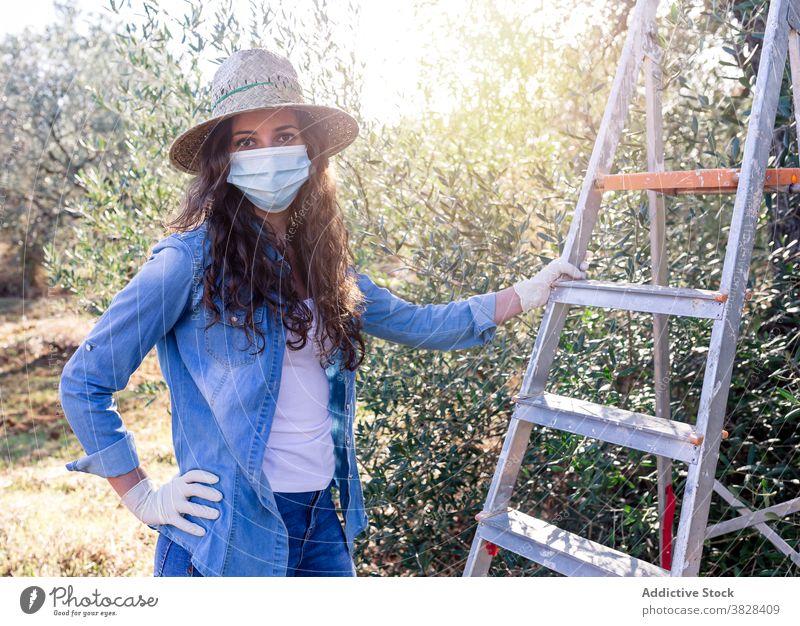 Porträt einer jungen Frau, die bei der Ernte arbeitet Landwirt Mundschutz pflücken reif Frucht oliv kultivieren Schonung COVID19 Coronavirus Bauernhof Bund 19
