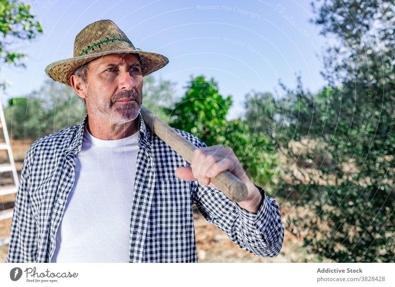 Seriöser reifer Landwirt in grüner Vegetation in Plantage Mann ernst Agronomie selbstbewusst Schonung Ackerbau Arbeiter Ernte Pflanze Job männlich Landschaft