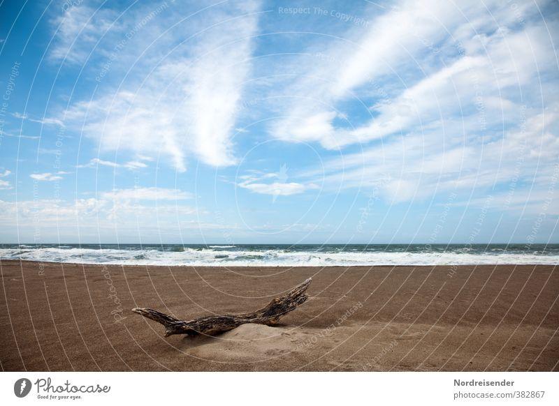 Holz harmonisch Sinnesorgane ruhig Landschaft Sand Wasser Himmel Wolken Schönes Wetter Wellen Strand Meer blau braun Fernweh ästhetisch Einsamkeit Erholung