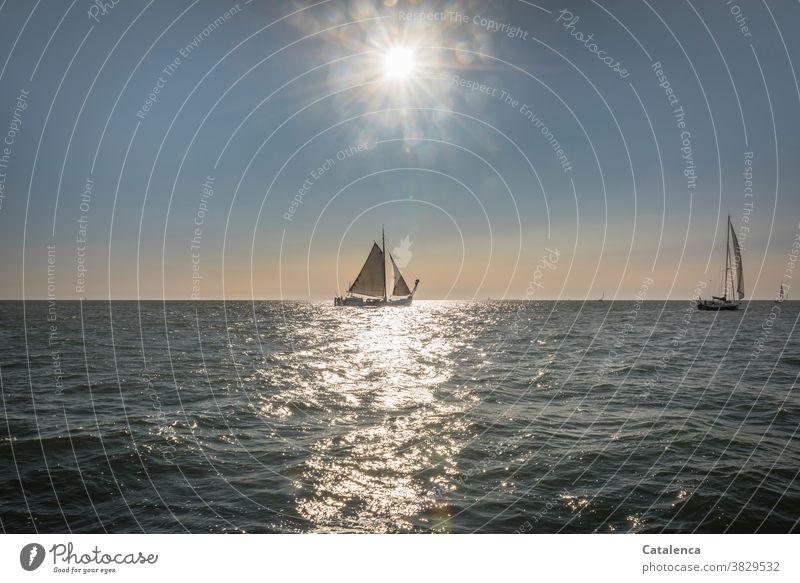 Plattbodenschiff im Sonnenlicht schönes Wetter Himmel Ferien & Urlaub & Reisen Meer Segel Horizont nass Wasser Freiheit Licht Segelyacht Wellen Sonnenstrahlen