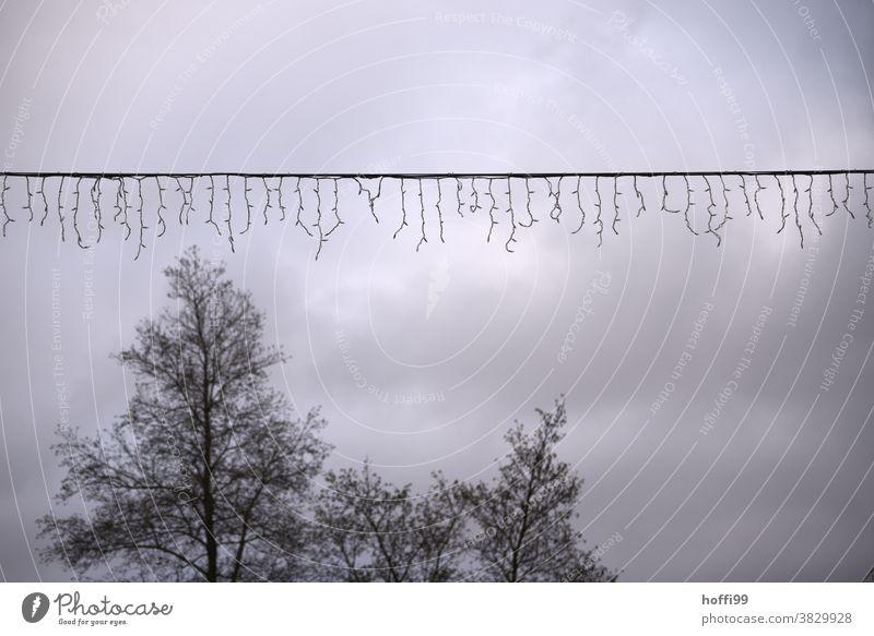 Weihnachtsbeleuchtung mit Baumfragment vor grauem Himmel Lichterkette Weihnachtsdekoration Tristesse Feste & Feiern Weihnachten & Advent Depression Enttäuschung
