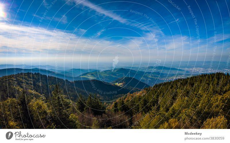 Vom Schauinsland nach Freiburg Wald Landschaft Schwarzwald Berge u. Gebirge Natur Außenaufnahme Menschenleer Himmel Schönes Wetter Wolken Sonnenlicht Baum